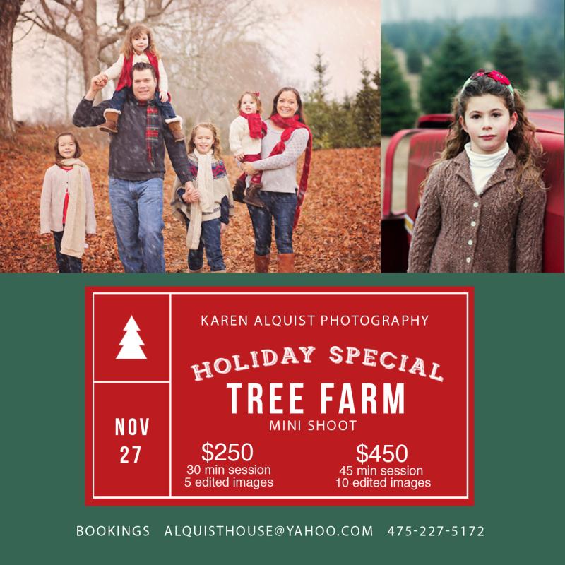 Tree farm mini copy